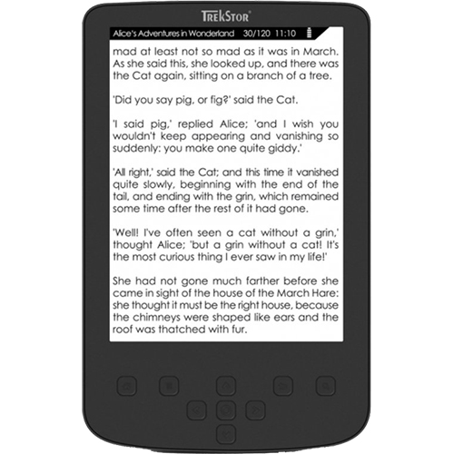 EBook Pyrus 2GB LED Negru